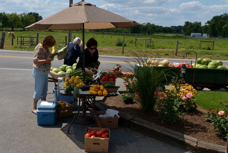 Best Things to Do in Lancaster County, Pennsylvania If You Only Have a Weekend