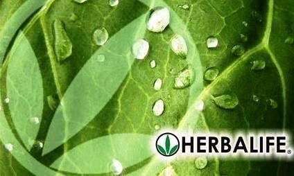 herbalife artwork | HERBALIFE registra crescimento e quer regionalizar distribuição