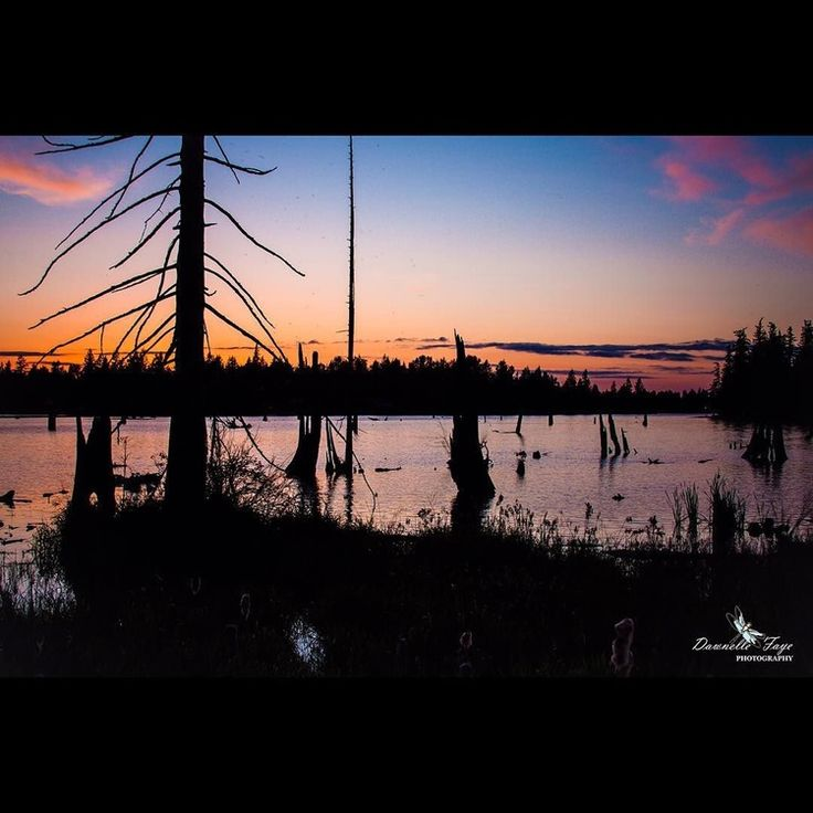 "Dawnellefayephotography ""The Colors of Sunset"", Lake Tapps. in #nature# travel#…"