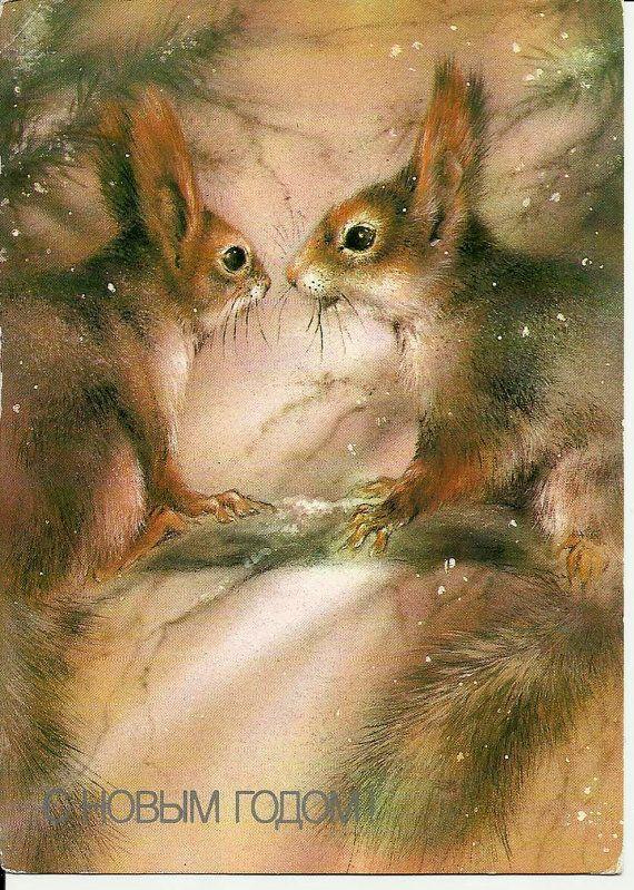 Squirrels on pine  Vintage  Russian Postcard unused
