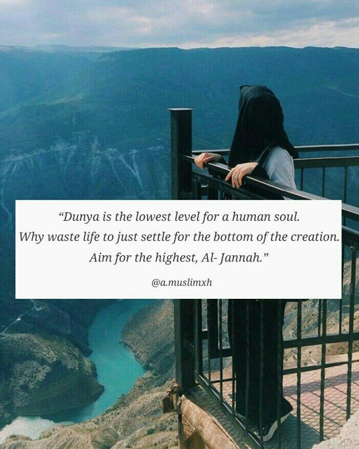 Aim for the highest... Jannah!