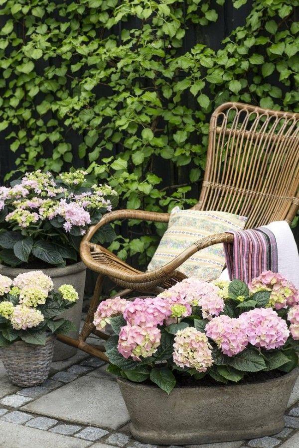 15 ideas de paisajismo con hortensias