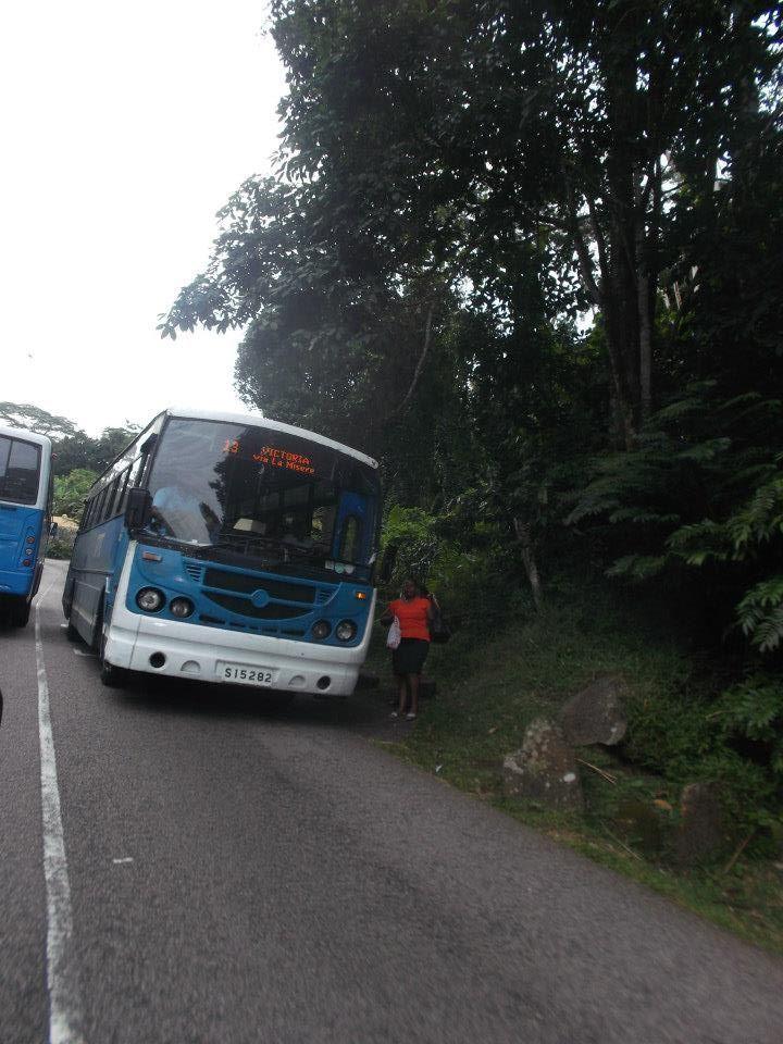 Sezel bus