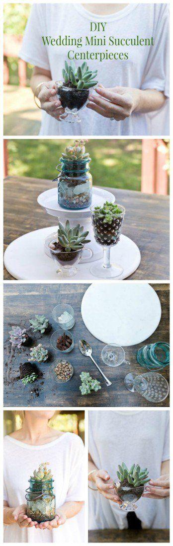 DIY Wedding Succulent Centerpieces
