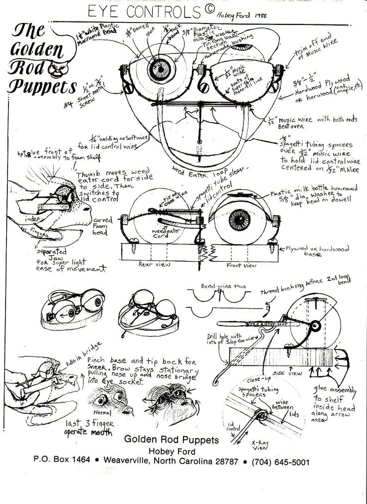 http://www.hobeyford.com/files/monkyeyes.JPG I also recommend that you just google Puppets blinking eyes