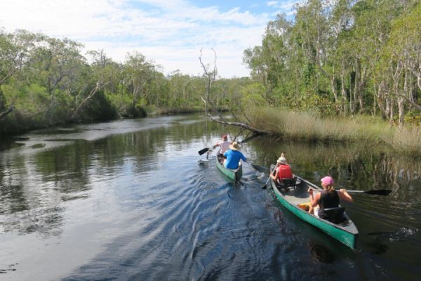 As we travel around Australia on our big lap there are a few iconic trips we want to do and exploring the Everglades in Cooloola National Park was one of them. I had seen amazing photos of the rive…