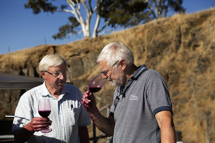 Geoff and Robert Schrapel (Bethany Wines). Image taken during Vintage/Harvest season in the Barossa 2016. Images by Dragan Radocaj Photography. Copywright Barossa Grape & Wine Association.