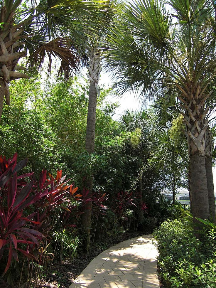 Walking trails on Windsor Hills Resort grounds.    http://rent-orlando-vacation-homes.com/next2disney-2/