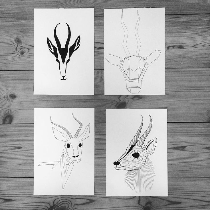 https://www.instagram.com/simonestubgaard/ taking one object and seeing it in different ways  #exploring #art #drawing #inspiration #gazelle #one #motive #different #angles #to #look #it #artsy #pendrawing #artist #simonestubgaard