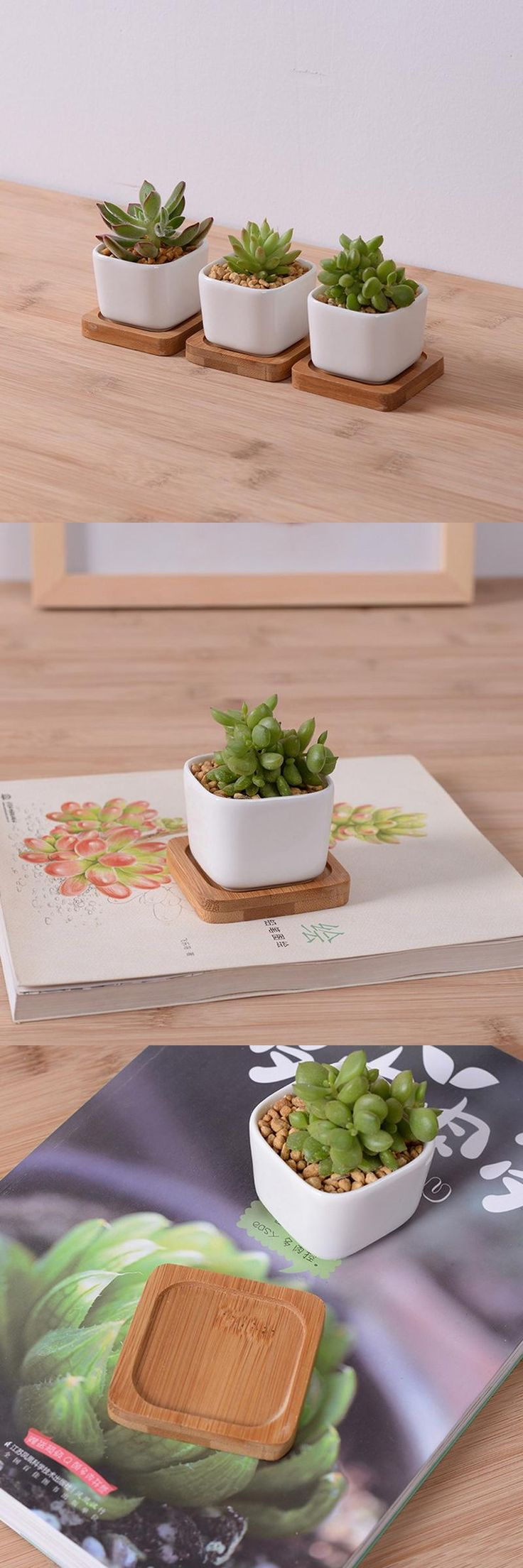 [Visit to Buy]  3pcs/lot hot sale mini ceramic flower planter pot with bamboo tray  white rectangular pottery bonsai plant pot for succulents   #Advertisement