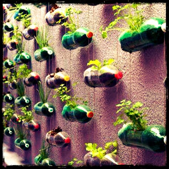 Great diy garden ideas the different diy vertical garden daddy groovy recycling - Garden ideas diy ...