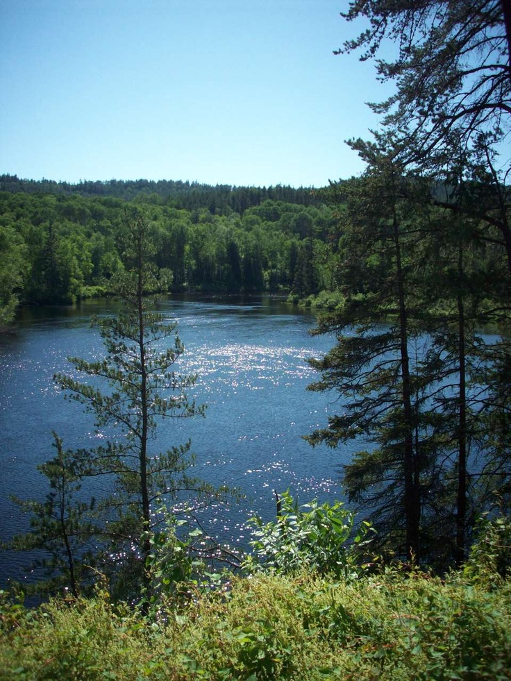 Summer view from Northern Ontario