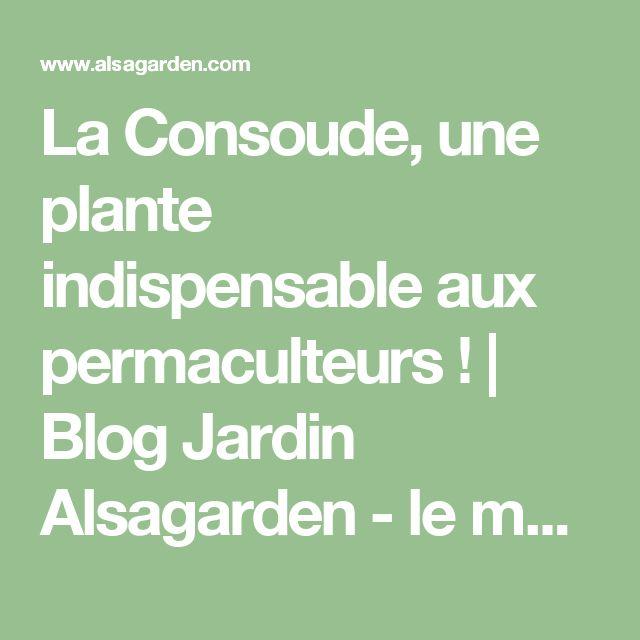 La Consoude, une plante indispensable aux permaculteurs ! | Blog Jardin Alsagarden - le magazine des jardiniers curieux