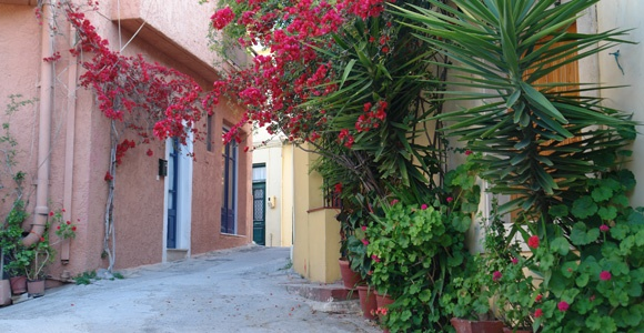 Archanes Village, crete, greece - will enjoy a home cooked meal by local women of the village.