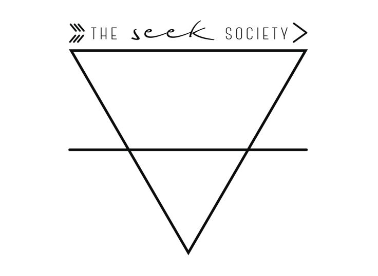 Image result for the seek society