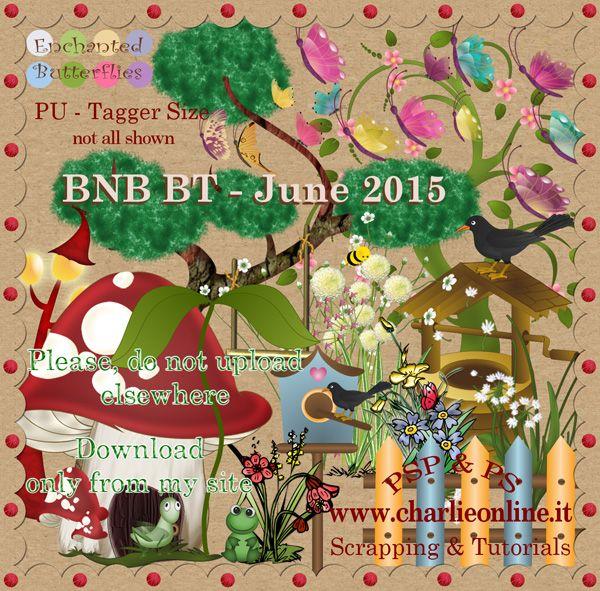 ch-June2015-ButterfliesBNB