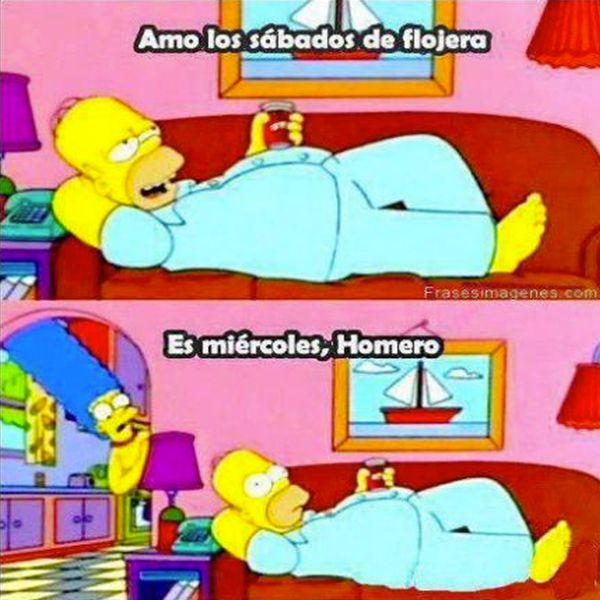 D'oh! #Homero #Simpson #Divertido