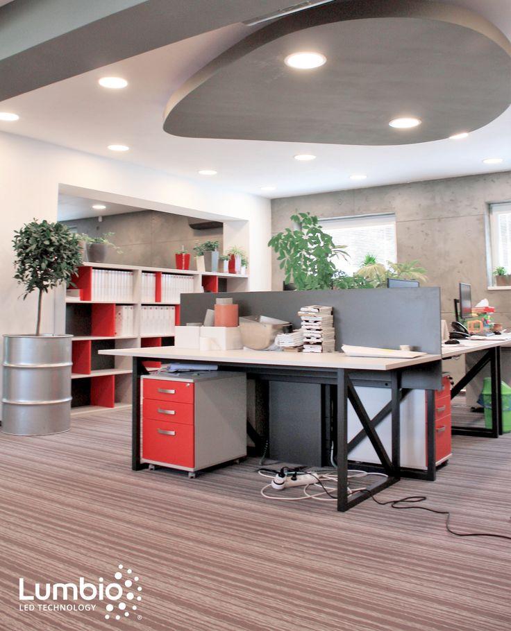 LED Panels Lumbio installed. Office lighting
