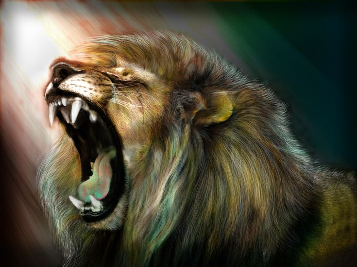 lion wallpaper for desktop background