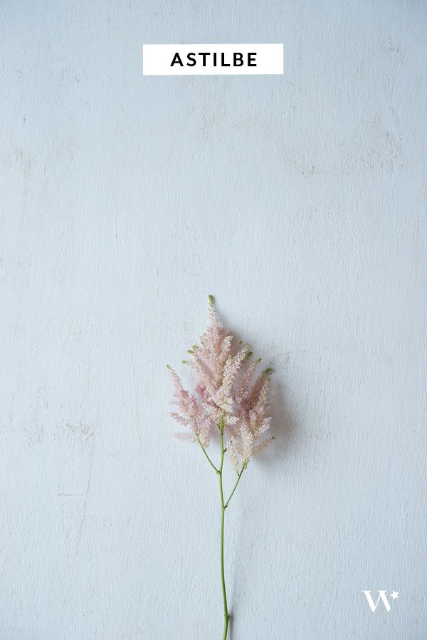 DIY Wedding Wednesday: The Seasonal Flower Guide Series – Summer Florals