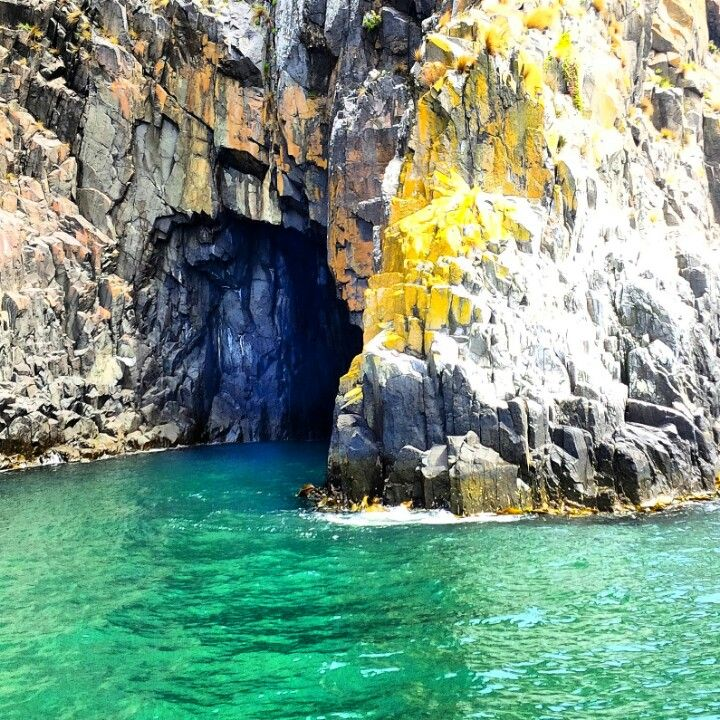 Bruny Island boat cruise, Tasmania