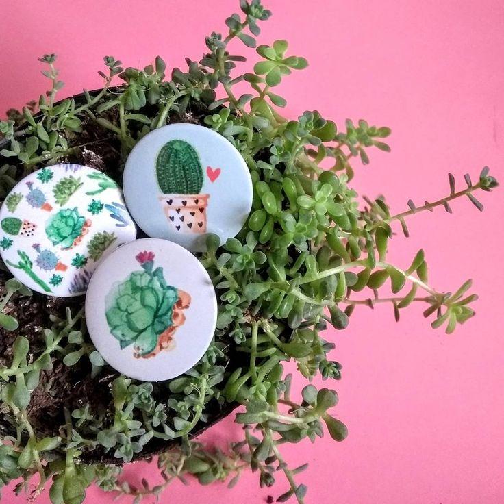"""50 Me gusta, 3 comentarios - TRU TRU TRU (@trutrutru.cosas) en Instagram: """"Para los qué amamos las plantas 🌵❤️✨ . . . #plantas #jardin #suculentas #cactus…"""""""