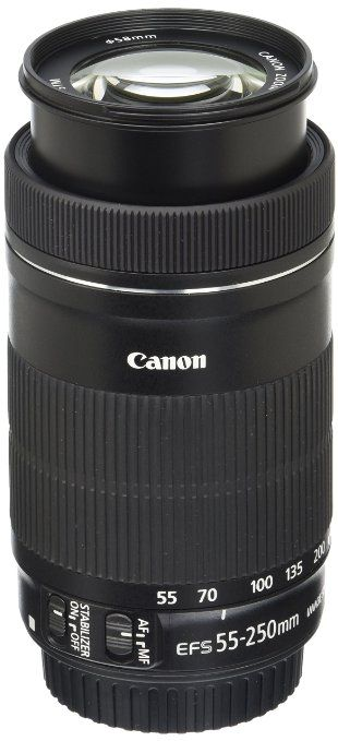 Cheaper telephoto option: Canon EF-S 55-250mm F4-5.6 IS STM Lens for Canon SLR Cameras