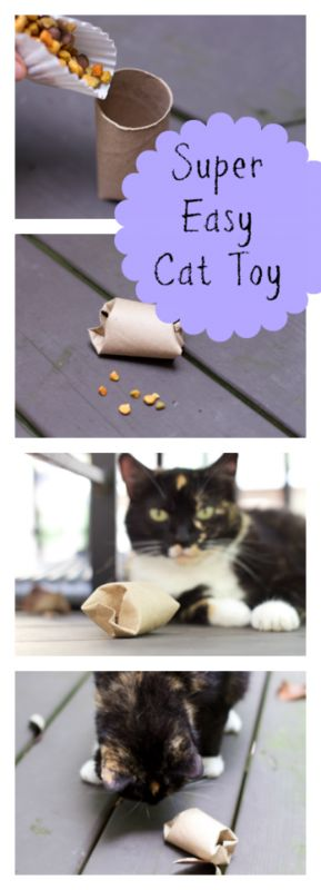 DIY Cat Food Puzzle Toy http://stayingclosetohome.com/diy-cat-food-puzzle-toy/ #ad