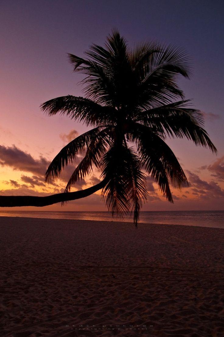 """ Fihalhohi Island - South Male (Kaafu) Ato by e t d j"