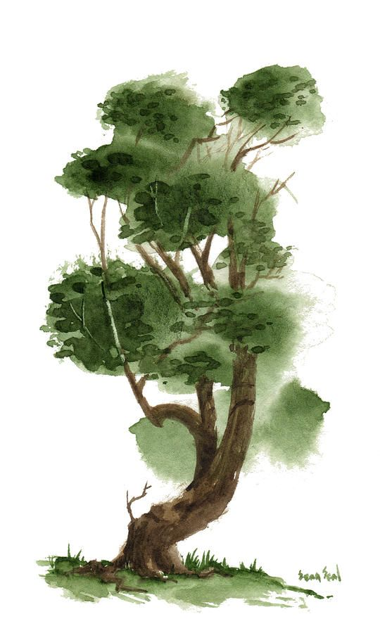 Bonsai Tree Painting - Little Tree 119 by Sean Seal