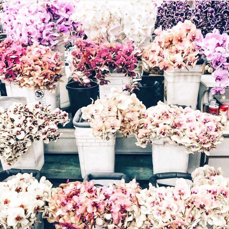 www.lesleycutlerbridalwear.co.uk  #buttonholes #wedding #weddingflowers #flowers #bride