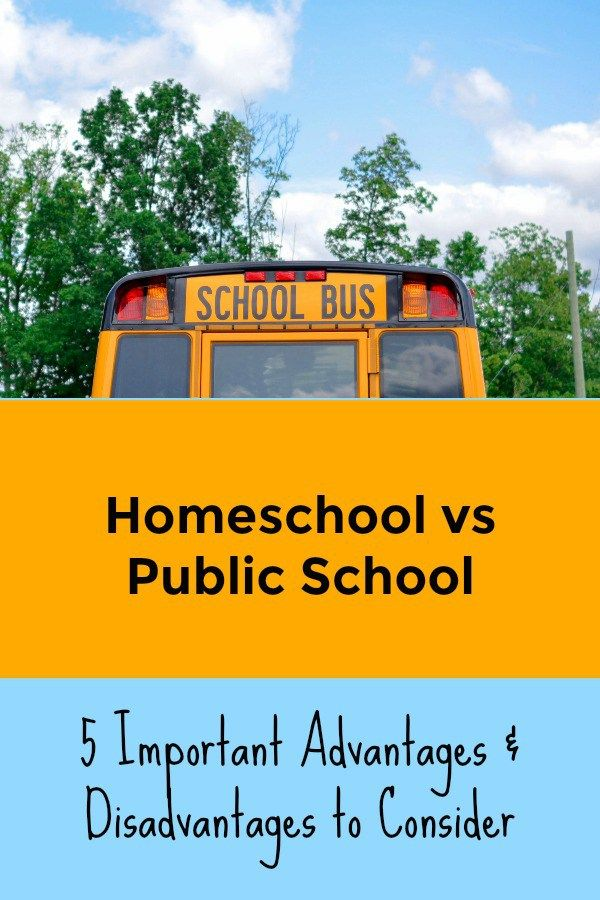 advantages and disadvantages of public and private schools