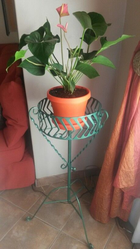 Rescued pot stand that looks pretty with a lick of paint.