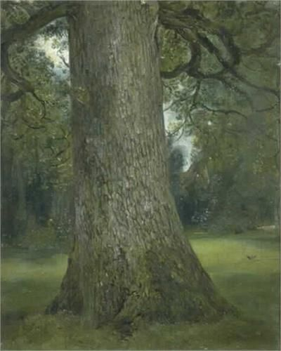 Probably my favorite tree pic on here yet! - Study of the Trunk of an Elm Tree - John Constable