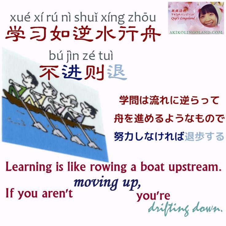 勉強することは、上り坂の道を歩くようなものだと感じませんか?「学問は流れに逆らって舟を進めるようなもので、努力しなければ退歩する」という中国語のことわざがあります。どう思いますか?  #中国語 #ことわざ #学习如逆水行舟   Akiko's Lingoland