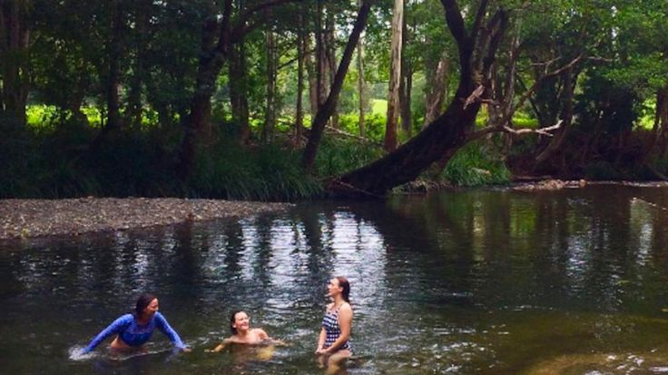 Never Never Creek, Bellingen, NSW, Australia - campervan travel