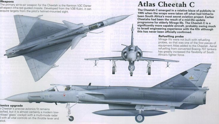 Atlas cheetah
