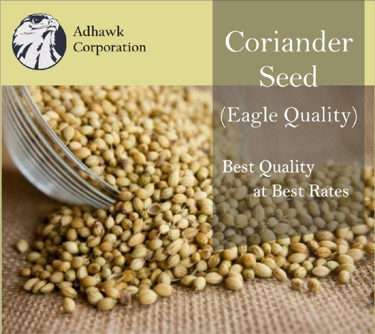 Coriander Seed.JPG