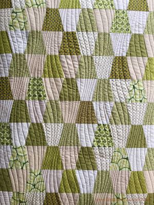 TUMBLER BLOCK QUILT..............PC.................'Modern Curves' by Anita Shackelford - Tumbler Quilt
