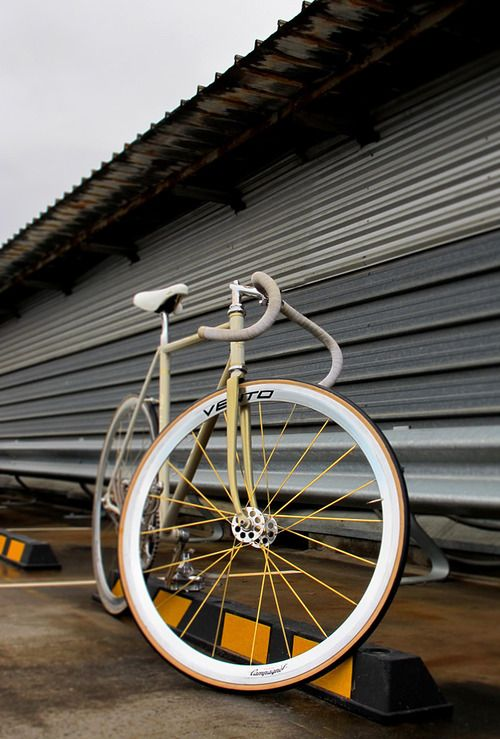 Nice campa wheels!
