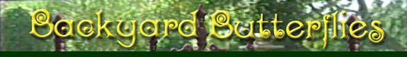 Logo: Backyard Butterflies