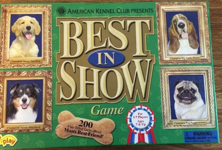 Best in Show AKC Dog Breed Game Complete American Kennel Club Ages 7 | eBay