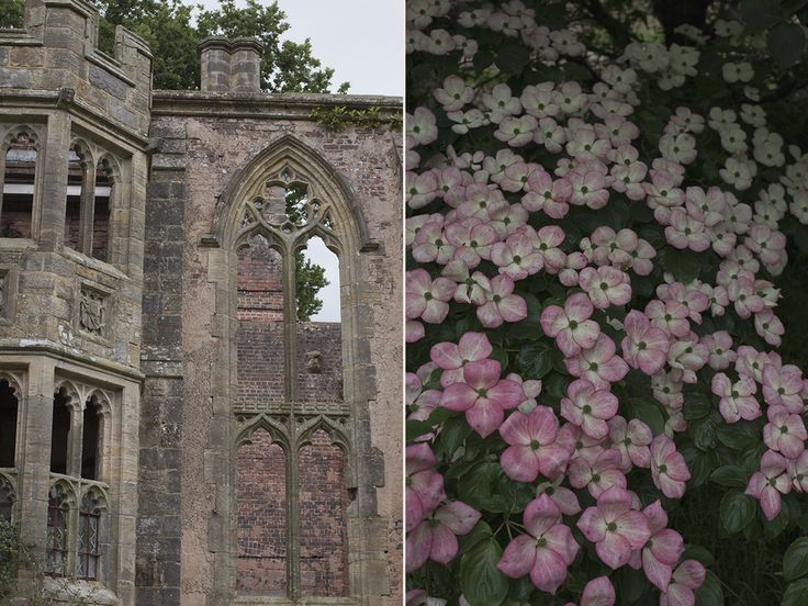 AESME | Flowers & Fine Art - Blog | Nymans