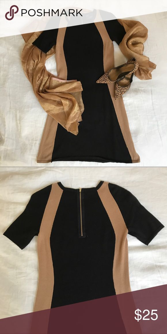 Beautiful black and camel work dress This dress is incredibly comfortable and the colors are fabulous. Only worn twice – good as new! Chic and conservative - perfect combo for work. Falls just above knee but not mini. Just Taylor Dresses