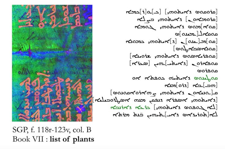 """Naima Afif, Postdoctoral Research -- ܒܨ̈ܘܝܐ (bswya) """"inquirer"""" in Syriac -- Assistant interprets Bk VI """"On abrotonon and absinthe"""" in ancient Syriac manuscript of Galen's treatise """"On Simple Drugs"""" (at The University of Manchester, UK with Université catholique de Louvain)"""
