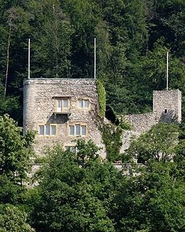Schlossberg Castle (German: Schlossberg) is a castle in the municipality of La Neuveville of the canton of Bern in Switzerland.