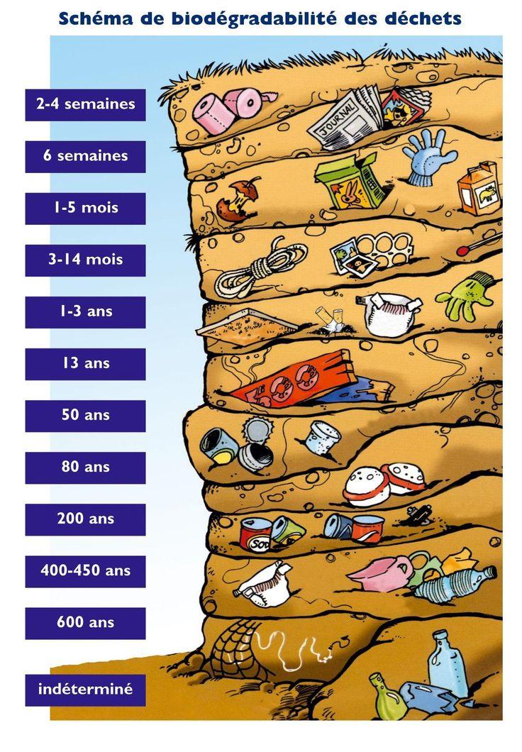 Durée de vie des déchets sur terre