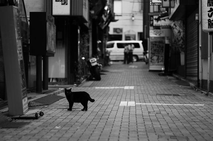yushima tokyo