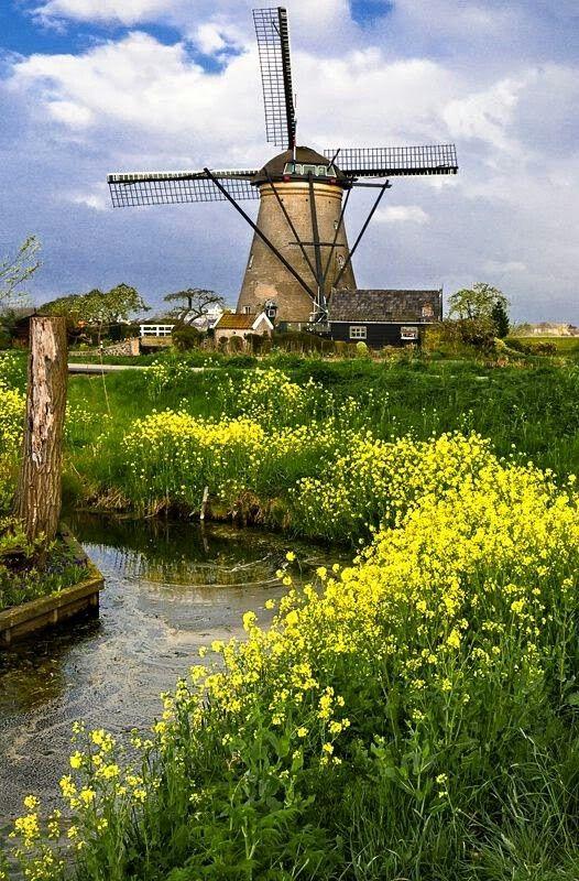Beautiful place in Kimderdijke in the Netherlands