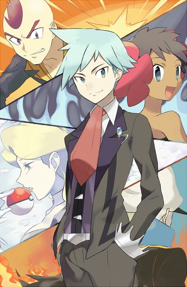 Pokemon Oras: Elite Four and Champion Steven Stone
